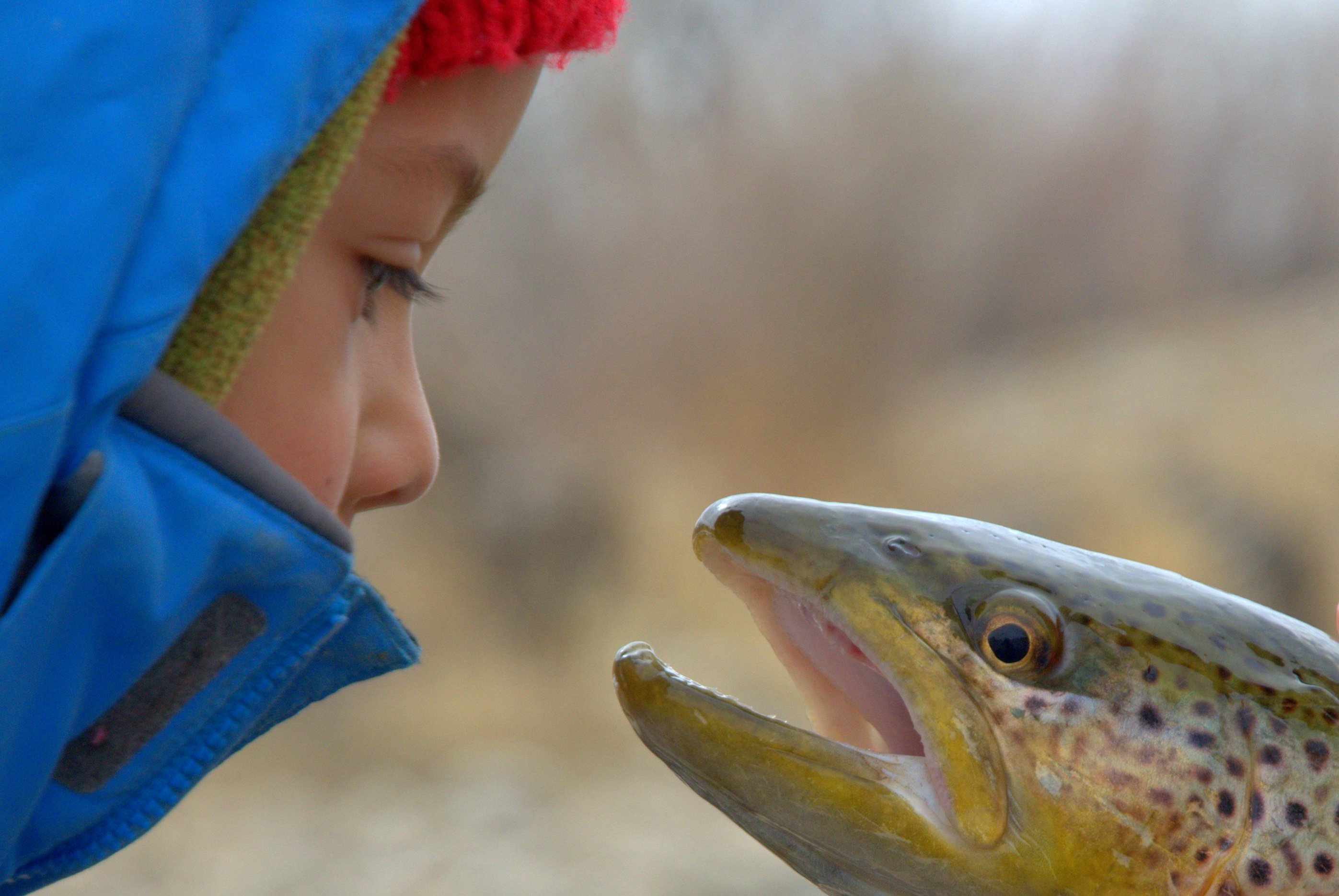 """""""Hey kid… if you want to keep meeting like this, you're dad's going to have to do something about climate change…. stat.""""  Photo by Matthew Copeland"""